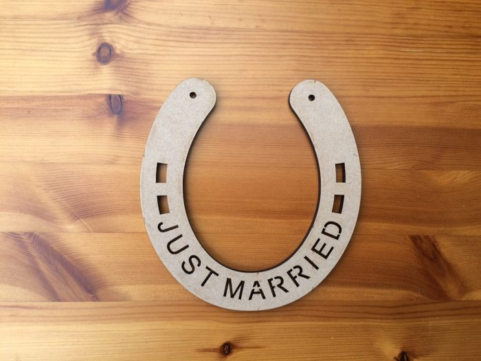 Just Married Horse Shoe